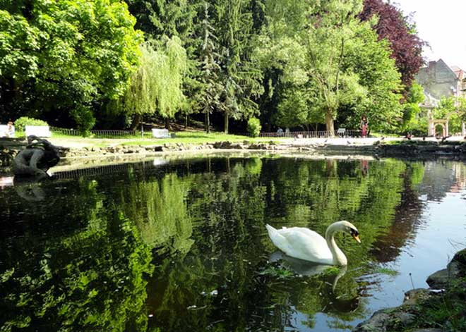 Lviv Stryjskyj Parkı | Lviv Haber