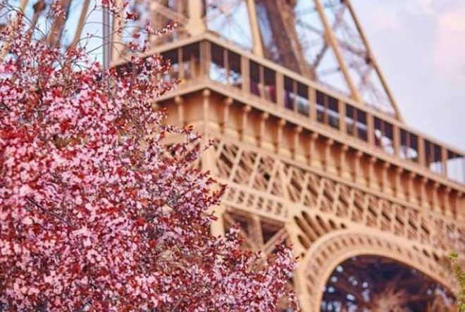 French Spring in Lviv, Ukrayna Bahar Festivali, Lviv Bahar Festivalleri, Lviv Festivaller, Lviv Fransız Bahar Etkinlikleri, Lviv Etkinlikler
